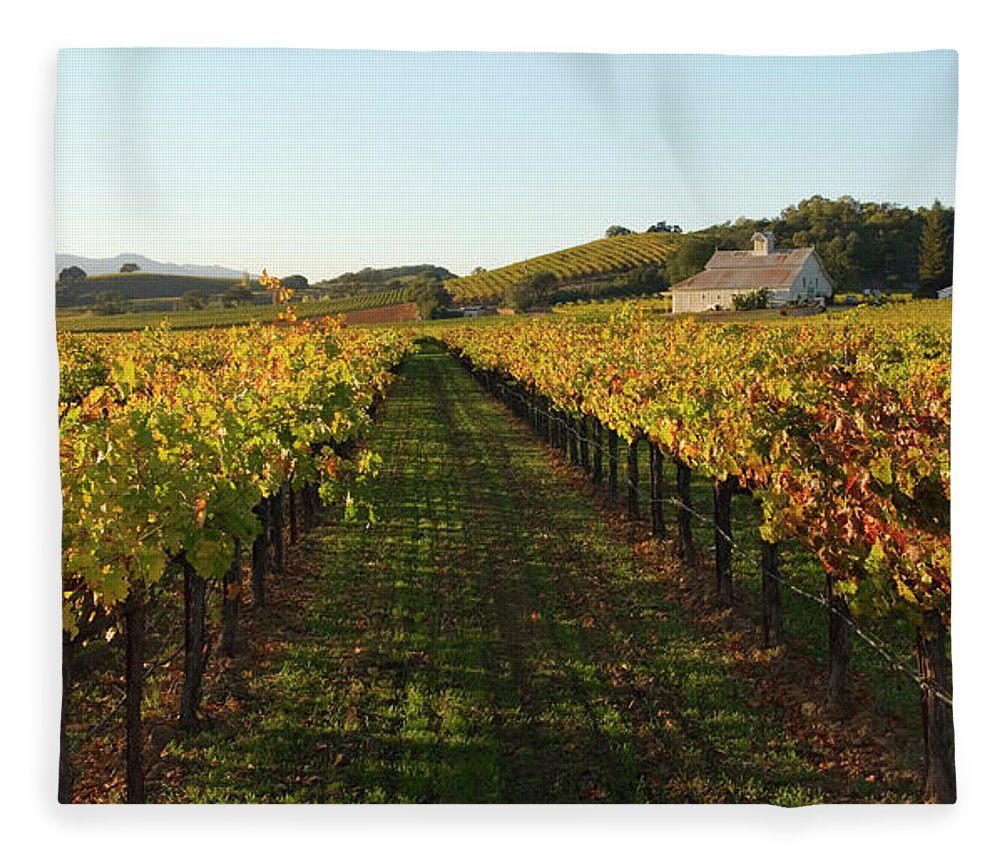 Scenics Fleece Blanket featuring the photograph Napa Valley Vineyard In Autumn by Leezsnow