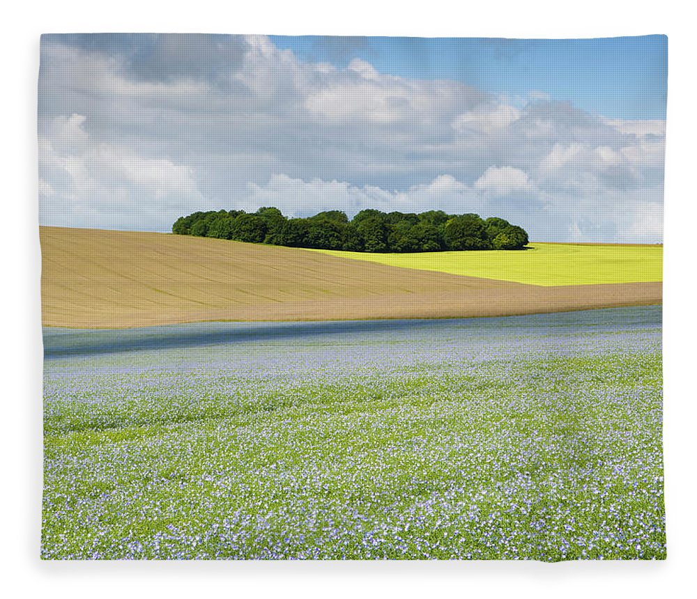 Flax Seed Fleece Blanket featuring the photograph Oilseed Flax, Wiltshire U.k by Antonyspencer