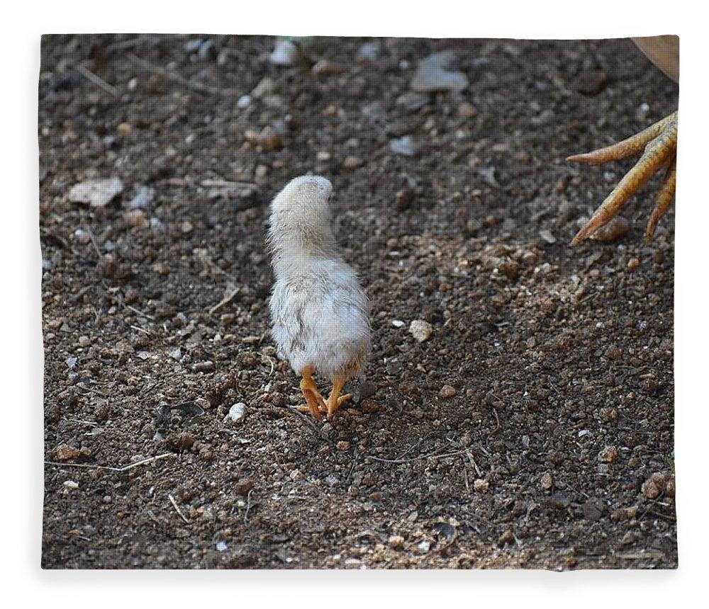 Baby Chick Fleece Blanket featuring the digital art Orange Feet by Cassidy Marshall