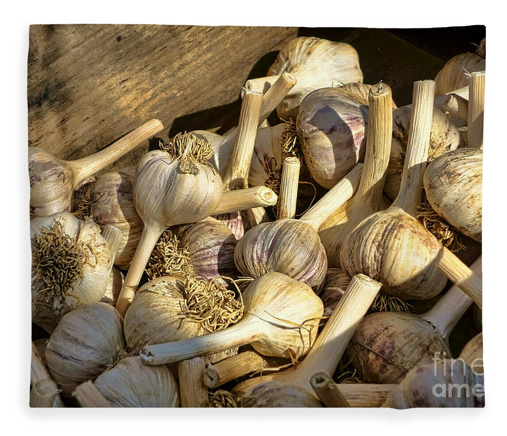 Garlic Fleece Blanket featuring the photograph Organic Garlic by Olivier Le Queinec