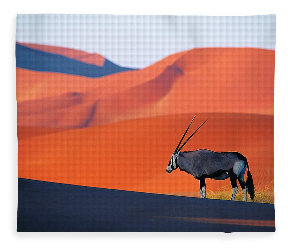 Scenics Fleece Blanket featuring the photograph Oryx Antelope by Natphotos