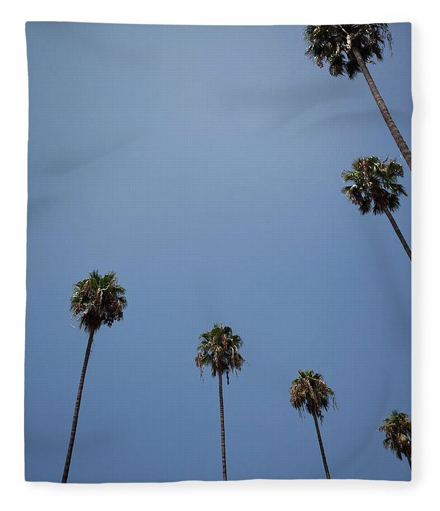 Tranquility Fleece Blanket featuring the photograph Palm Trees by Tuan Tran