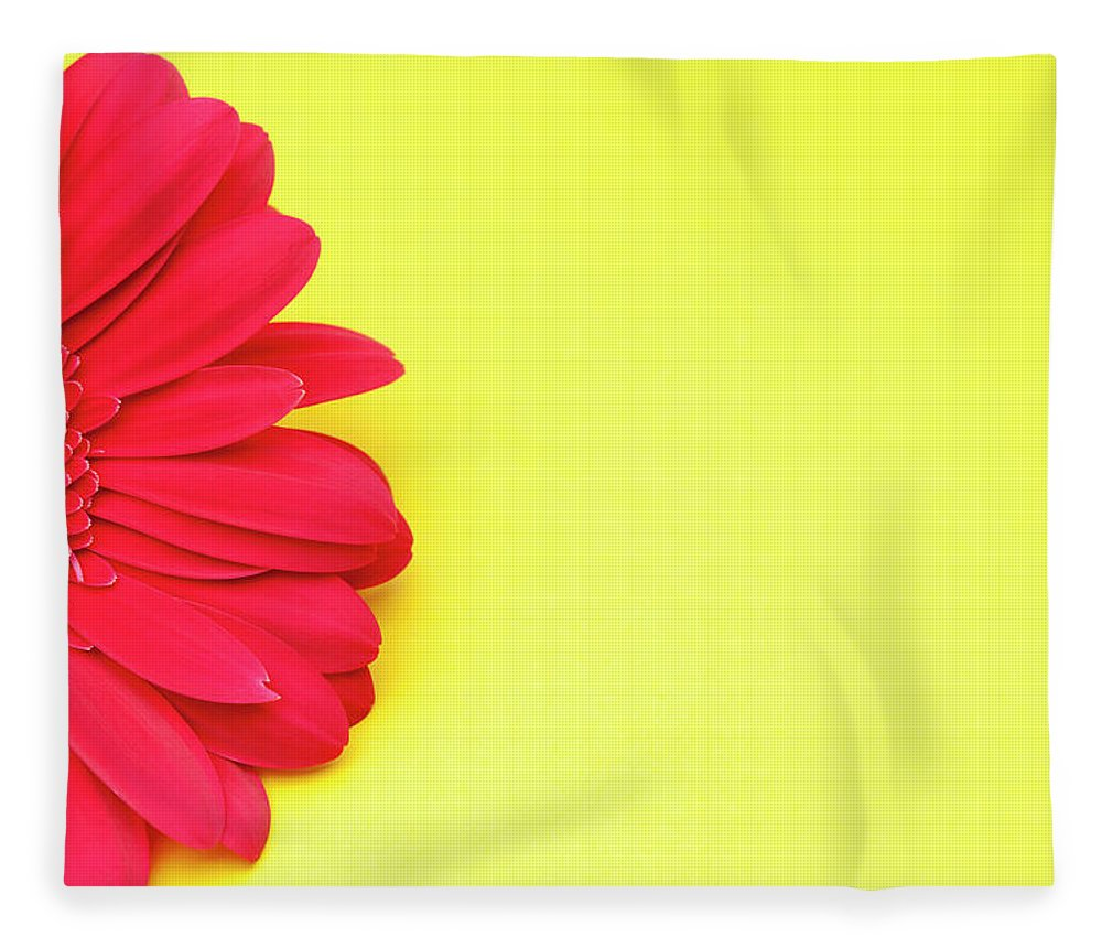 Petal Fleece Blanket featuring the photograph Pink Gerbera Daisy On Yellow Background by Jill Fromer