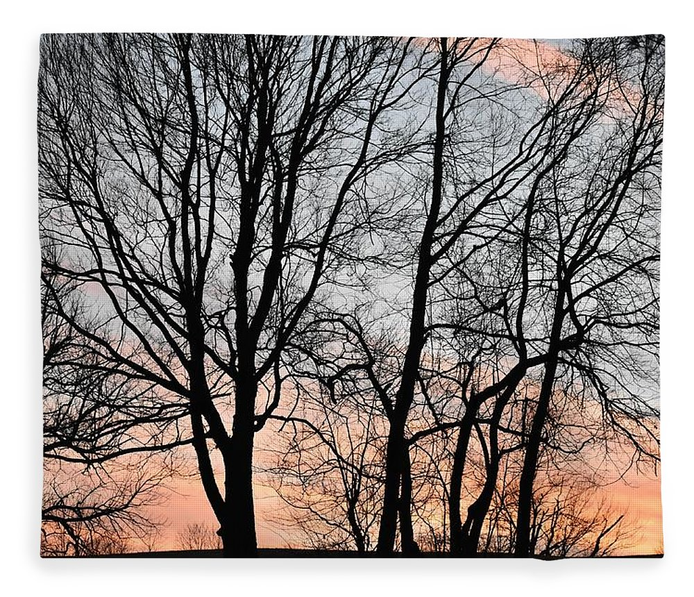 Trees Fleece Blanket featuring the photograph Pink Sky by Cassidy Marshall