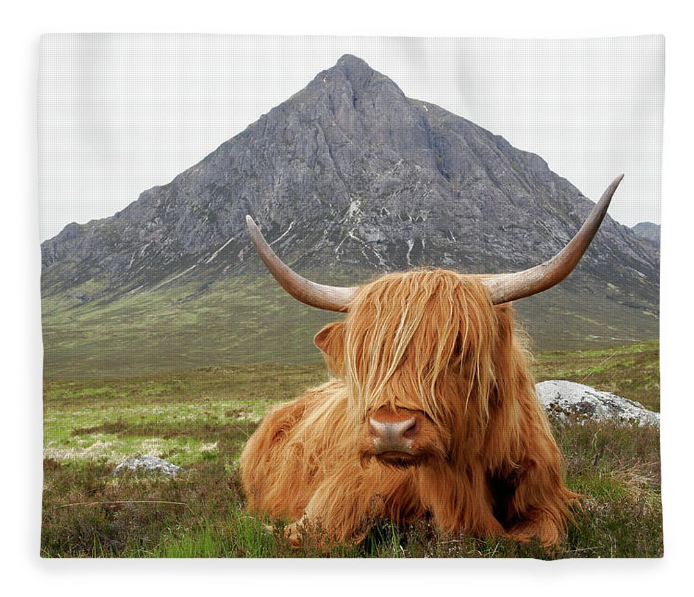 Horned Fleece Blanket featuring the photograph Quintessential Scotland by Thedman