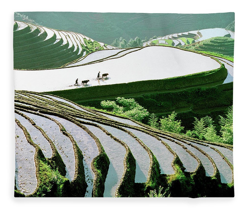 Chinese Culture Fleece Blanket featuring the photograph Rice Terraces by Kingwu