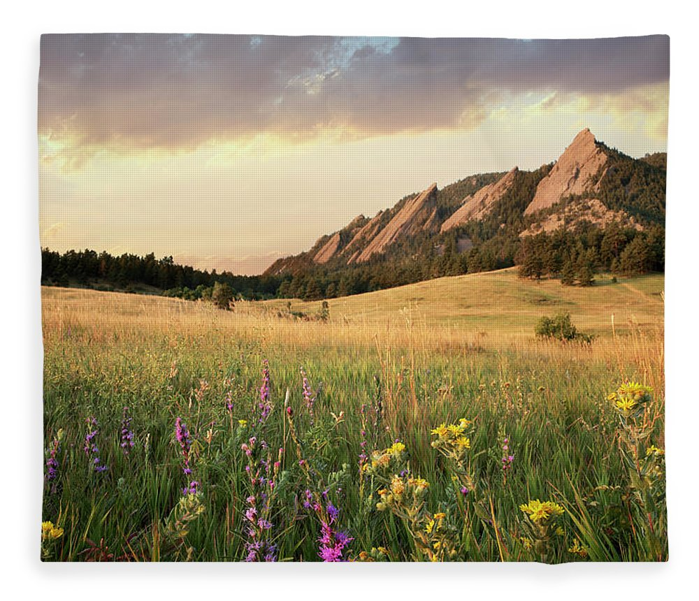 Tranquility Fleece Blanket featuring the photograph Scenic View Of Meadow And Mountains by Seth K. Hughes