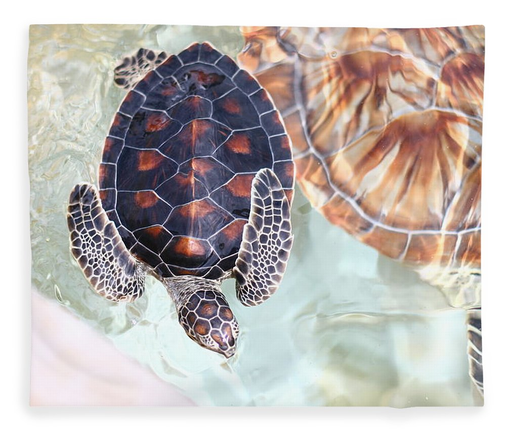 Underwater Fleece Blanket featuring the photograph Sea Turtle by Alyssa B. Young