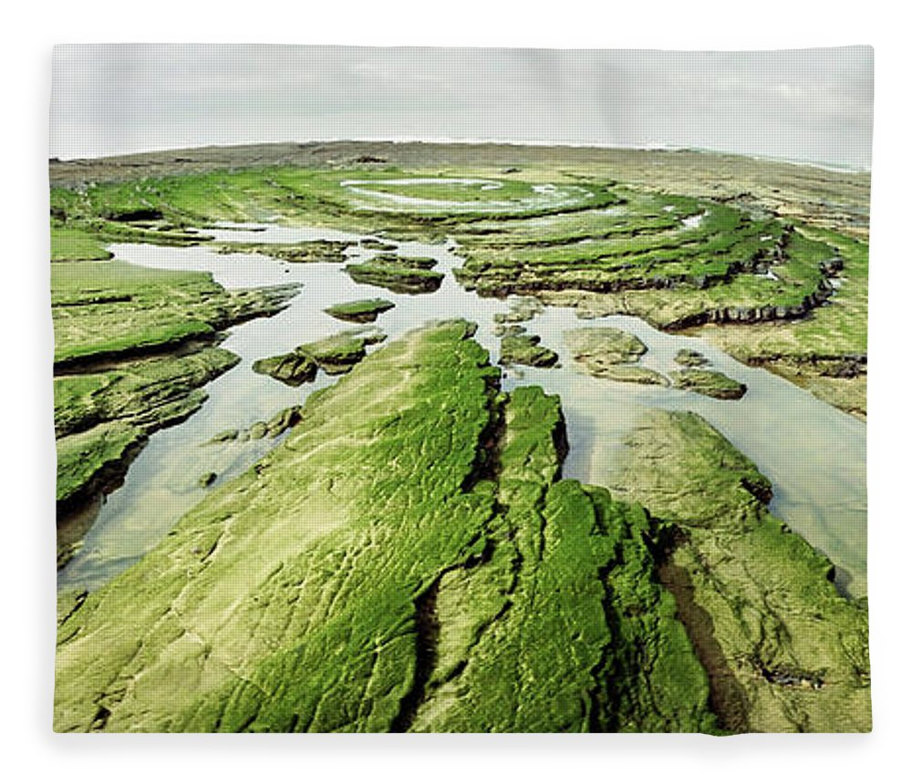 Scenics Fleece Blanket featuring the photograph Seaweed Collection by Kari Siren