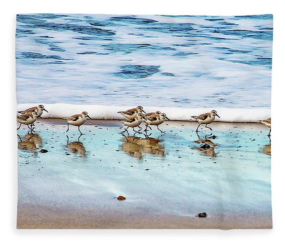 Animal Themes Fleece Blanket featuring the photograph Shorebirds by Vanessa Mccauley