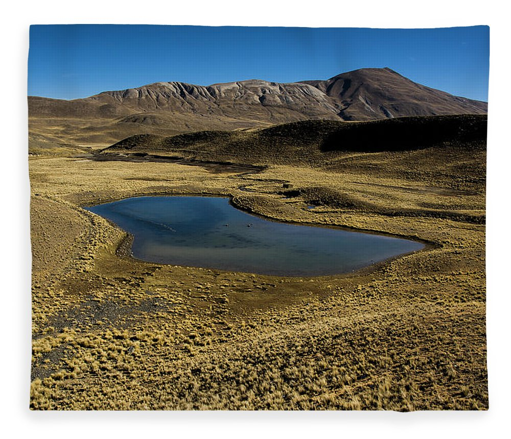 Tranquility Fleece Blanket featuring the photograph Small Lagoon In Condoriri National Park by © Santiago Urquijo