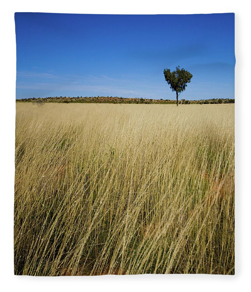 Scenics Fleece Blanket featuring the photograph Small Single Tree In Field by Universal Stopping Point Photography