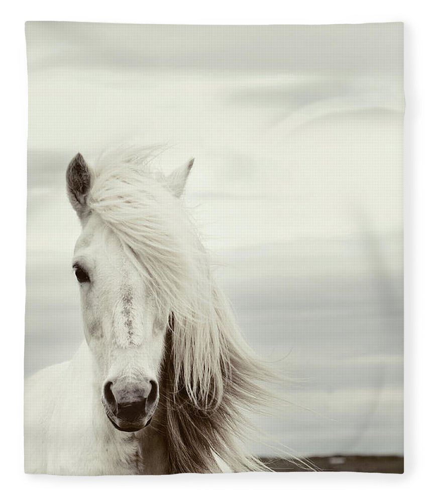 Horse Fleece Blanket featuring the photograph ísold by Gigja Einarsdottir