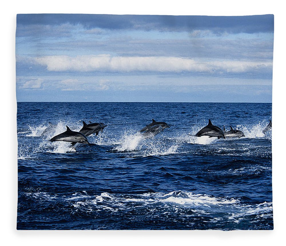 Spray Fleece Blanket featuring the photograph Striped Dolphin,stenella Coeruleoalba by Gerard Soury