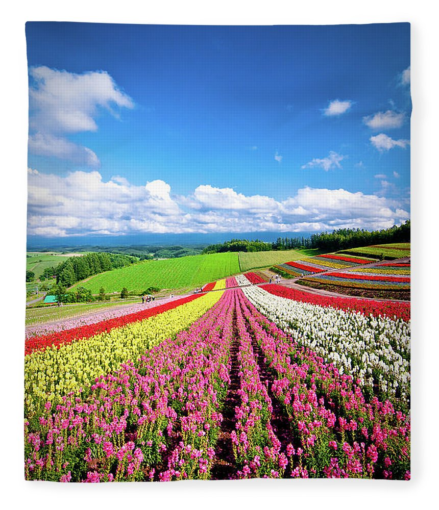 Tranquility Fleece Blanket featuring the photograph Summer Of Furano by Grace's Photo