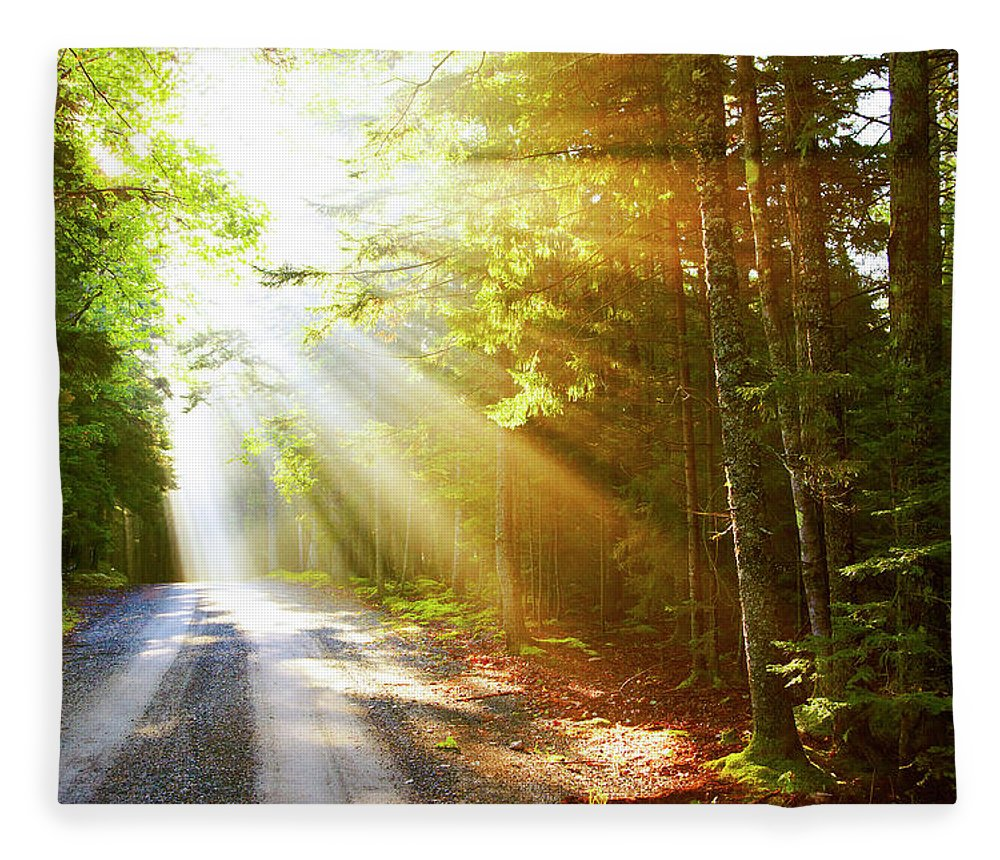 Outdoors Fleece Blanket featuring the photograph Sunflare On Road by Thomas Northcut