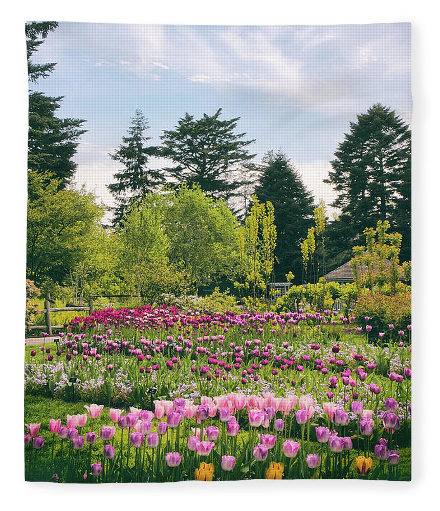 Tulips Fleece Blanket featuring the photograph Tulips In Bloom by Jessica Jenney