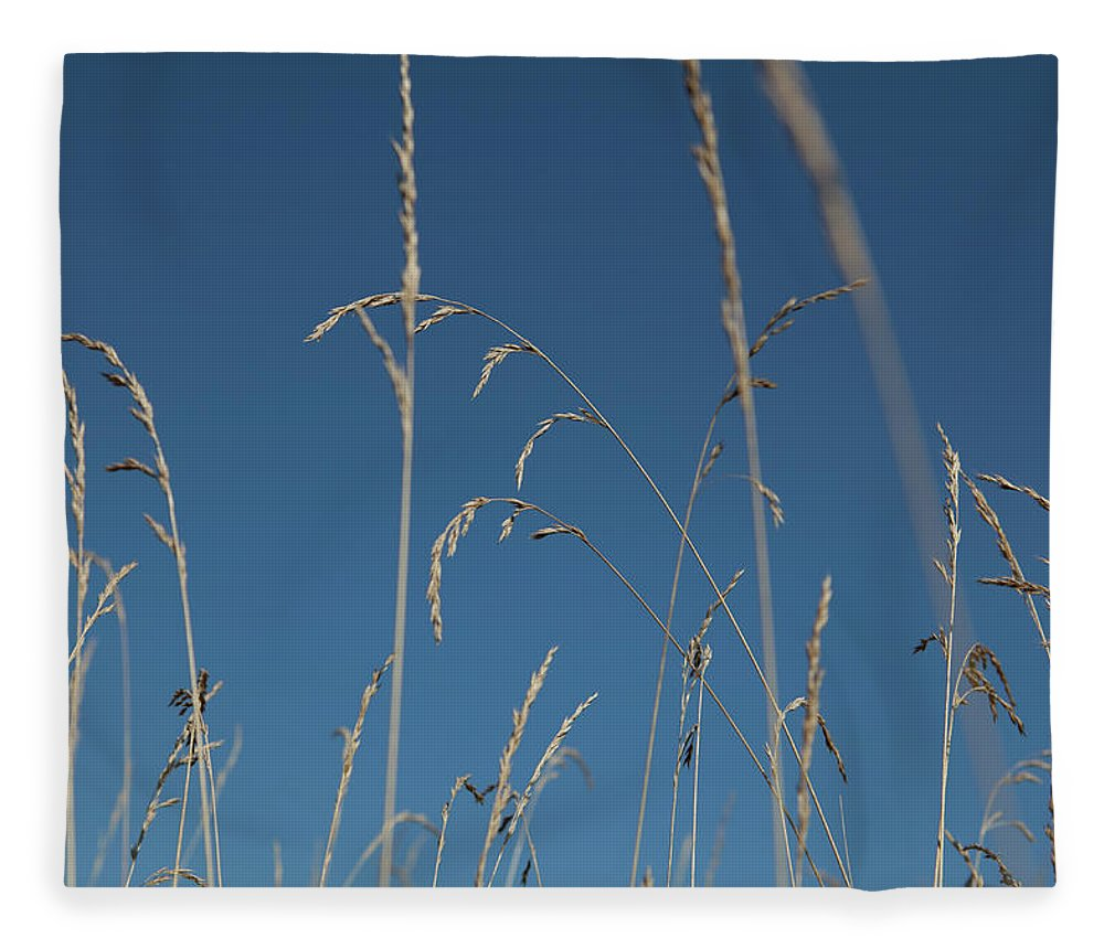 Tranquility Fleece Blanket featuring the photograph Tall Grasses Swaying Against A Blue Sky by Lauren Krohn