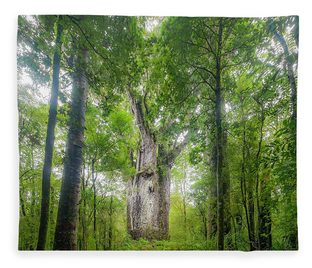 Tropical Tree Fleece Blanket featuring the photograph Te Matua Ngahere, Giant Kauri Tree by Kim Westerskov