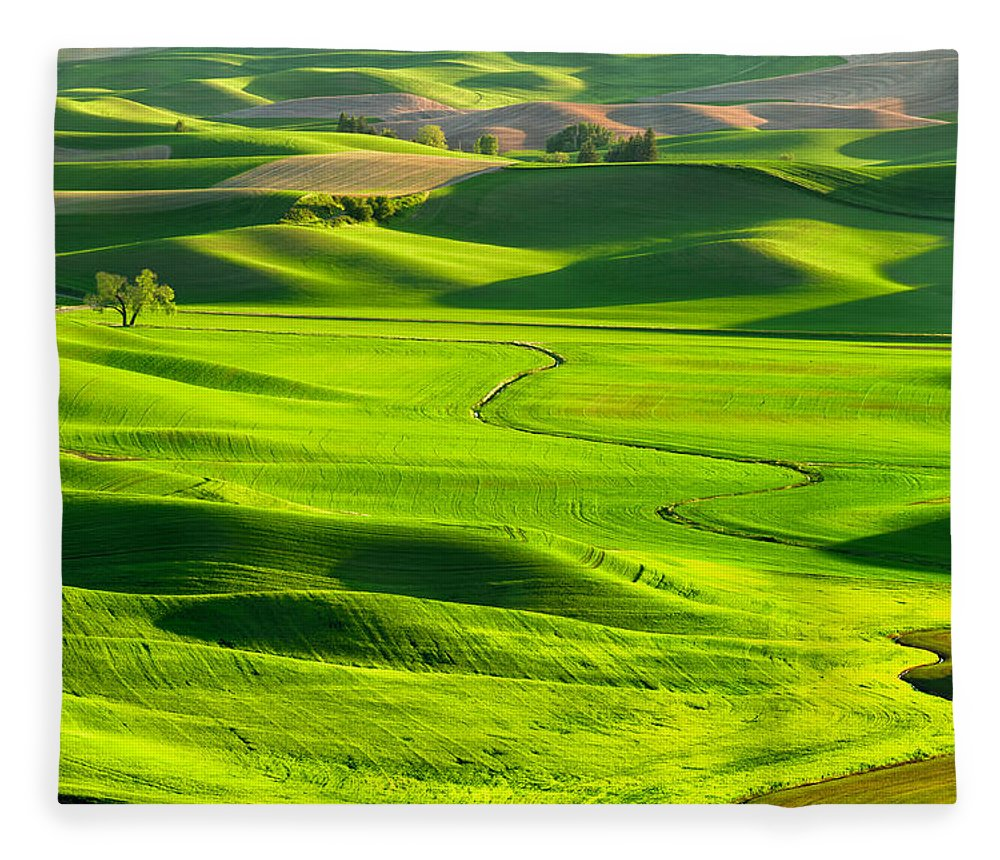 Scenics Fleece Blanket featuring the photograph The Palouse Rolling Hills by Justinreznick