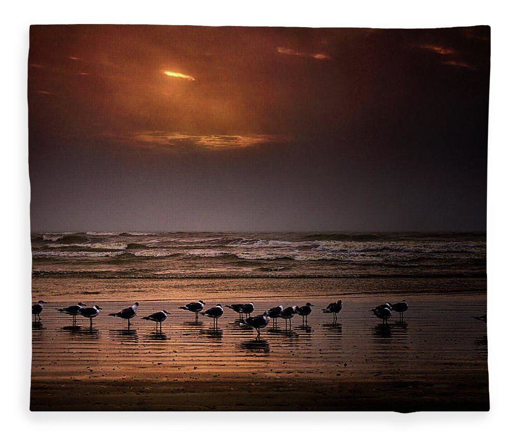 Water's Edge Fleece Blanket featuring the photograph Theres Gotta Be Food Around Here by Dean Fikar