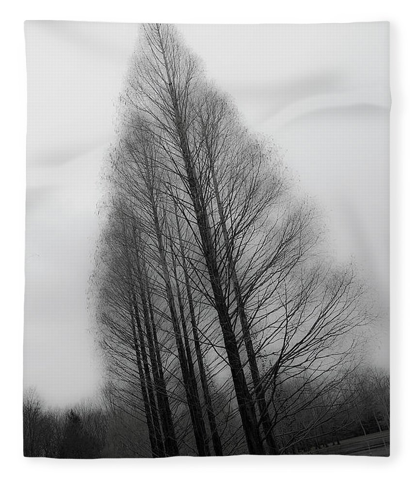 Tranquility Fleece Blanket featuring the photograph Trees In Winter Without Leaves by Marie Hickman