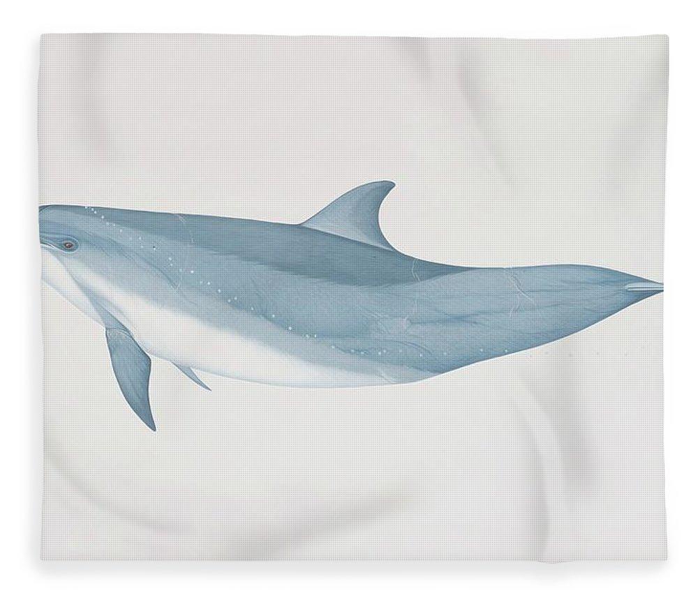 White Background Fleece Blanket featuring the digital art Tursiops Truncatus, Bottlenose Dolphin by Martin Camm