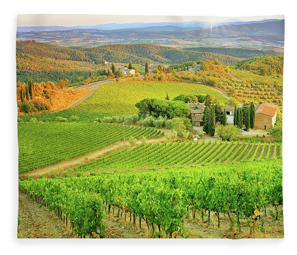 Environmental Conservation Fleece Blanket featuring the photograph Vineyard Sunset Landscape From Tuscany by Csondy
