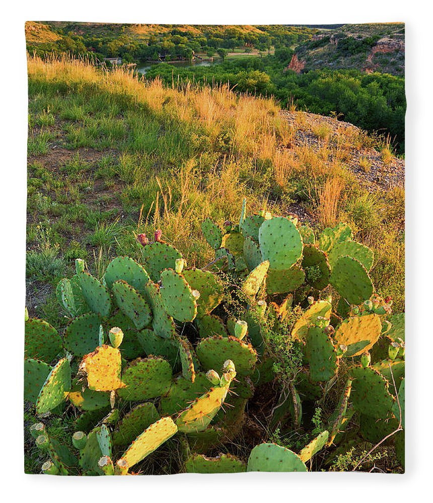 Scenics Fleece Blanket featuring the photograph West Texas Canyon Country At Buffalo by Dszc