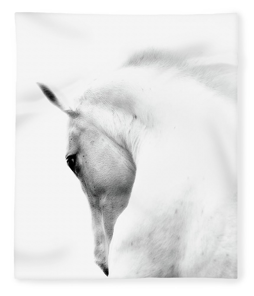 Horse Fleece Blanket featuring the photograph White Stallion Andalusian Horse Neck by 66north