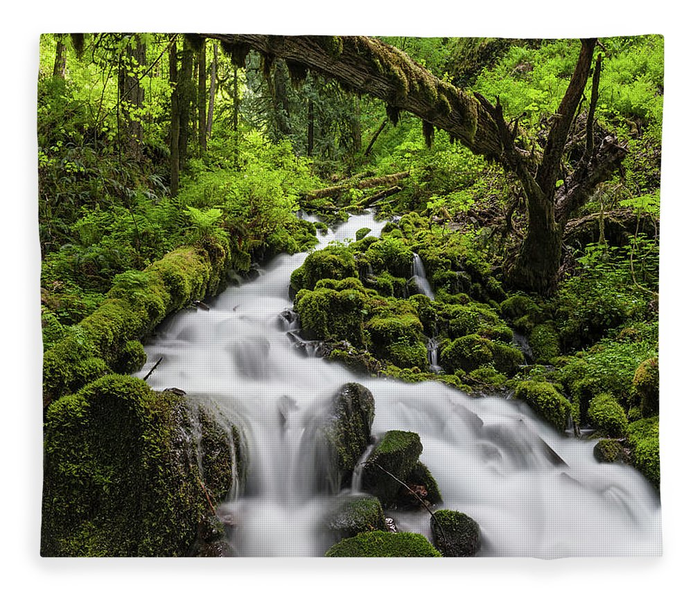 Scenics Fleece Blanket featuring the photograph Wild Forest Waterfall Idyllic Green by Fotovoyager