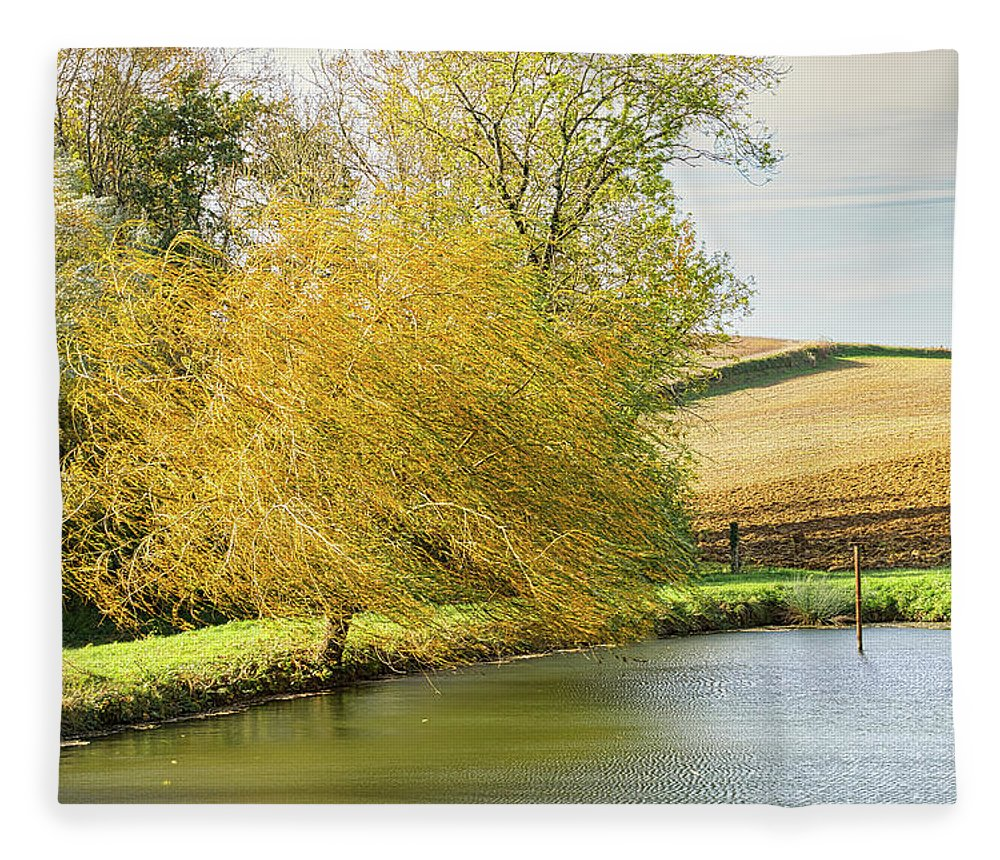 Wind Fleece Blanket featuring the photograph Wind In The Willow by Michael Briley