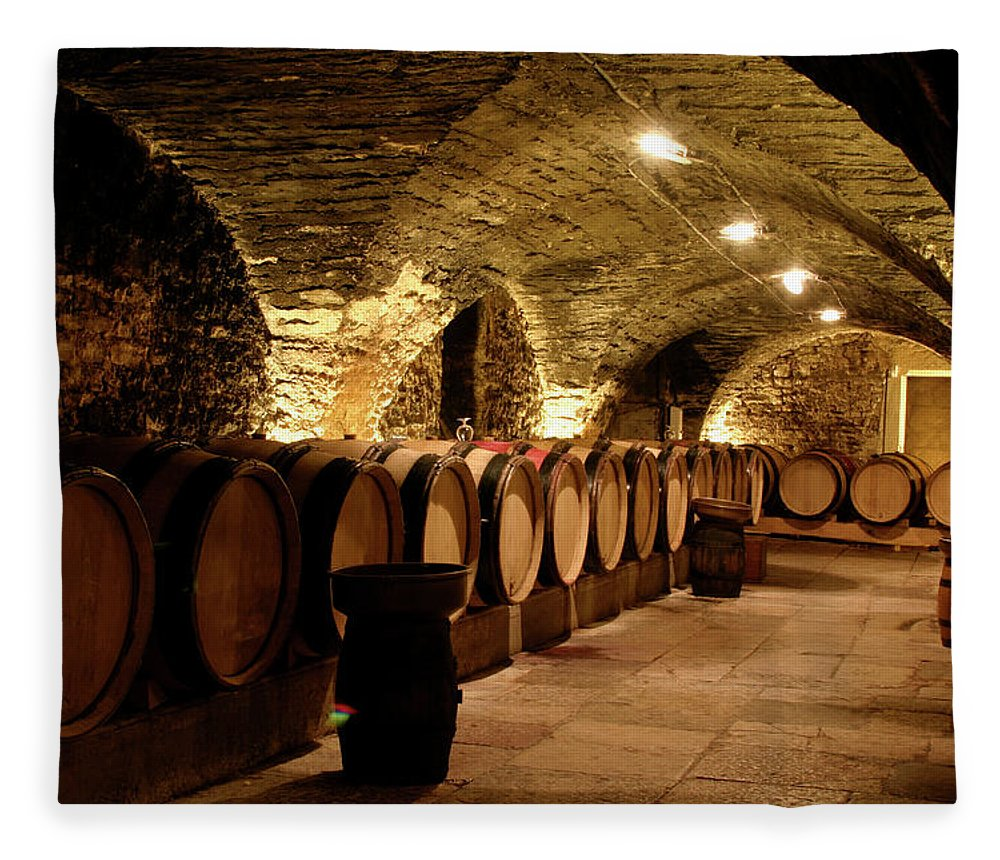 Arch Fleece Blanket featuring the photograph Wine Cellar by Brasil2