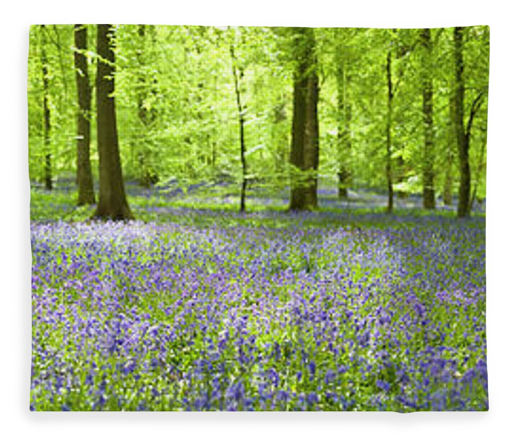 Scenics Fleece Blanket featuring the photograph Wonderful Woodland by Pkfawcett
