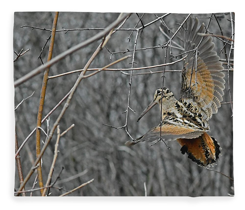 American Woodcock Fleece Blanket featuring the photograph Woodcock Feathers by Asbed Iskedjian