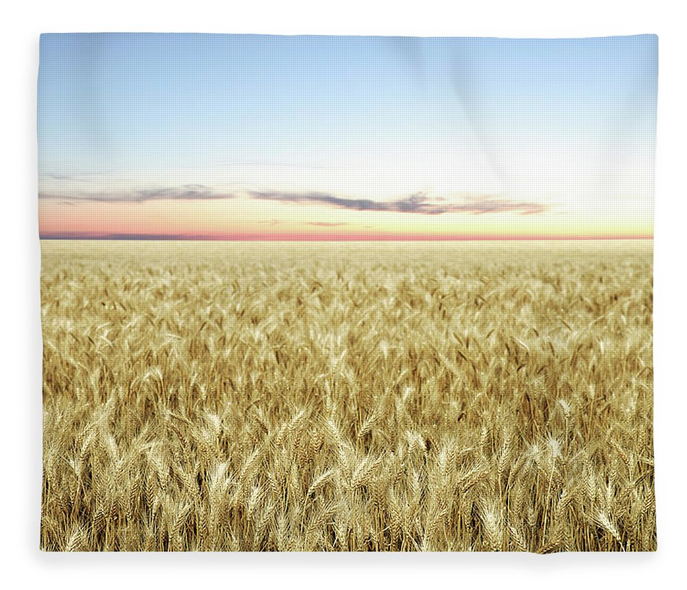 Scenics Fleece Blanket featuring the photograph Xxl Wheat Field Twilight by Sharply done