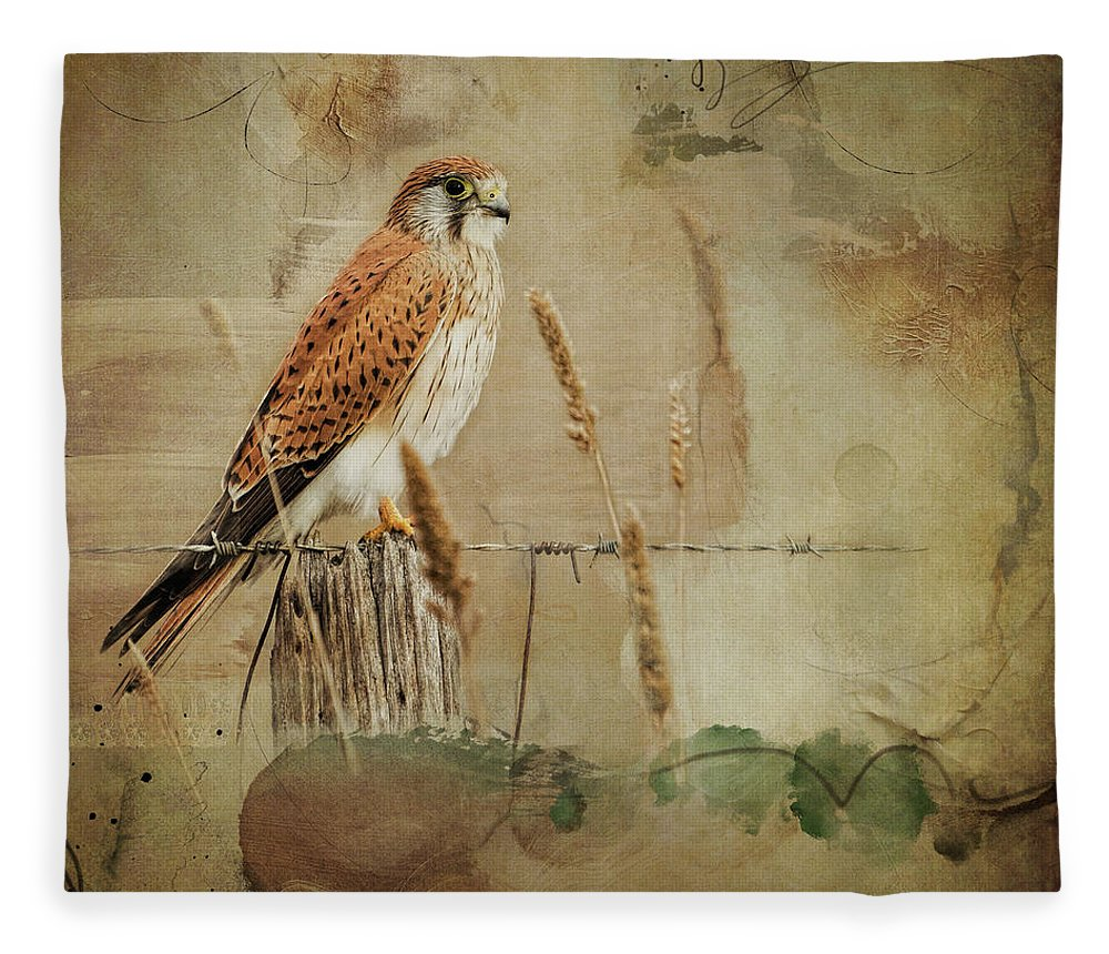 Nature Fleece Blanket featuring the digital art Australian Kestrel by Linda Lee Hall