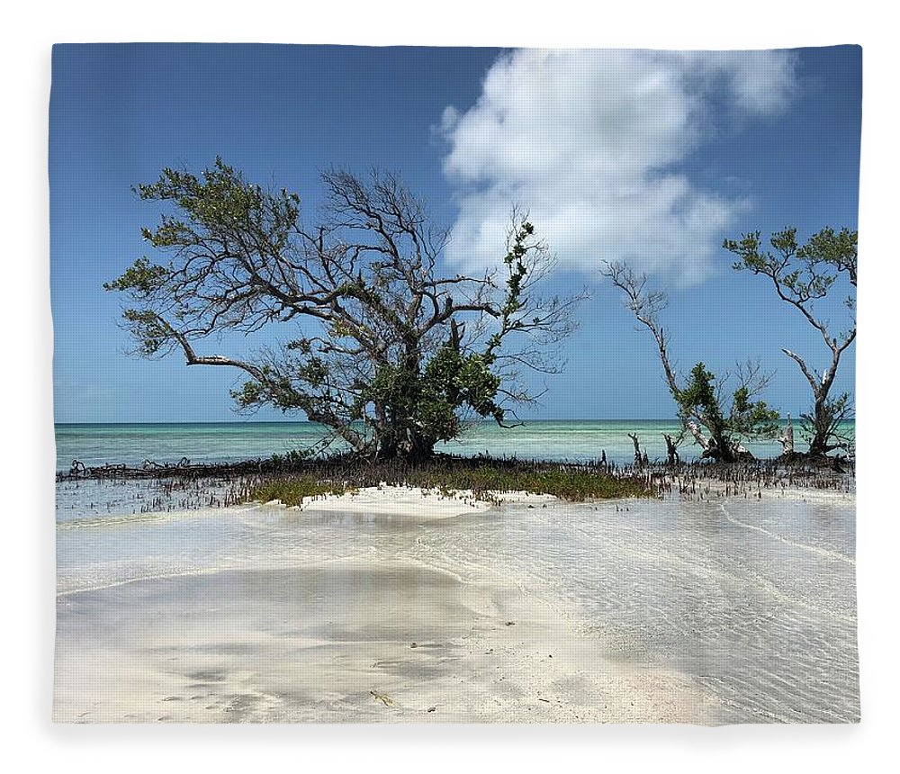 Key West Florida Waters Fleece Blanket featuring the photograph Key West Waters by Ashley Turner