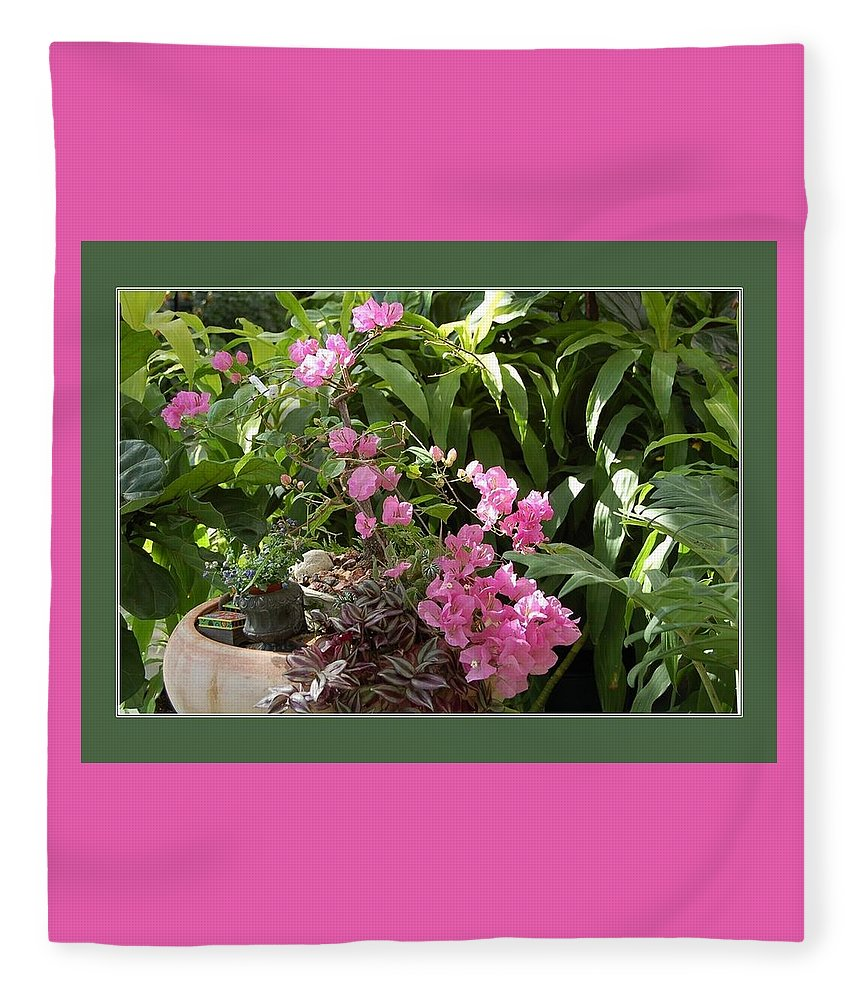 Bougainvillea Fleece Blanket featuring the photograph Crescent Light On Tropicals by Nancy Ayanna Wyatt