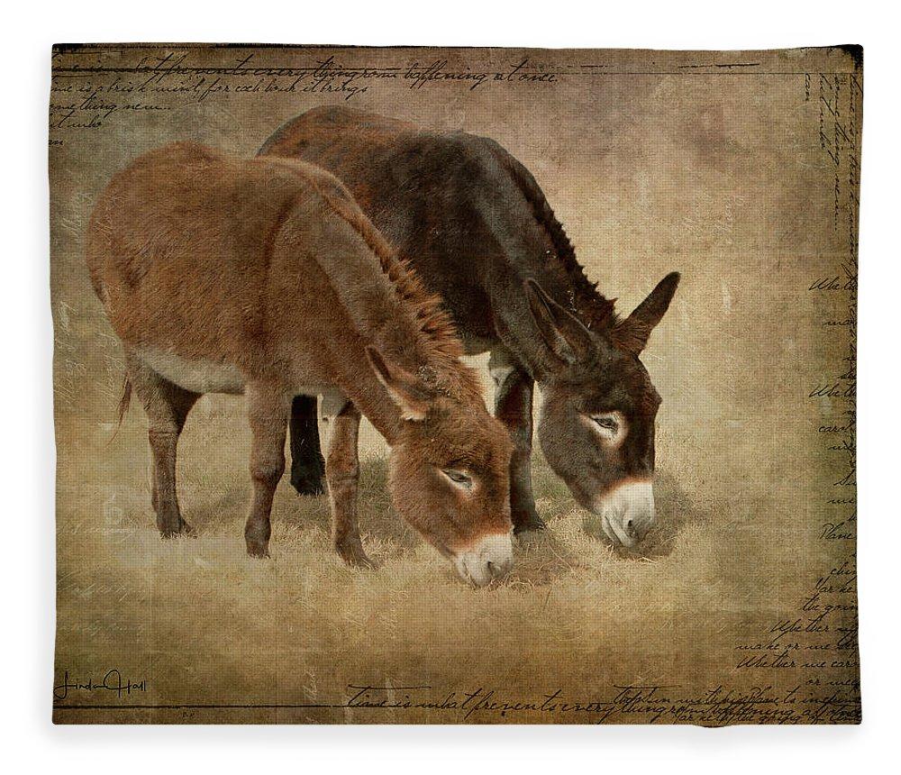 Donkeys Fleece Blanket featuring the digital art Daisy and Wilma by Linda Lee Hall