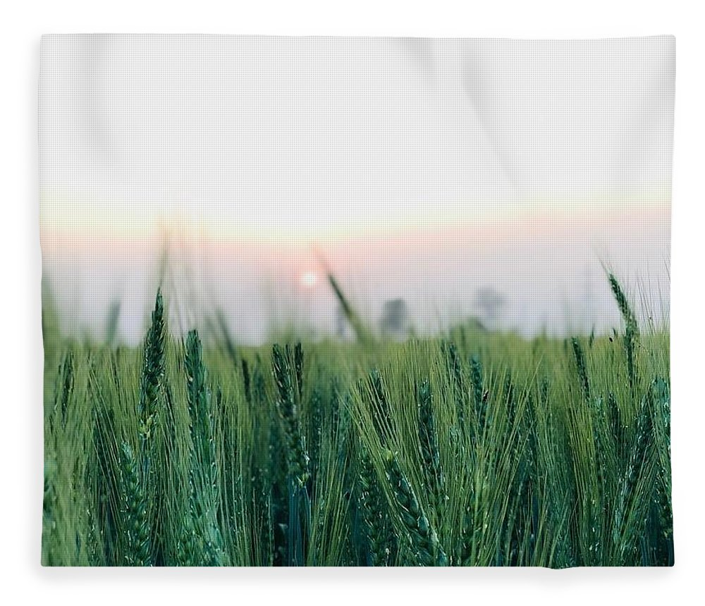 Lanscape Fleece Blanket featuring the photograph Greenery by Prashant Dalal