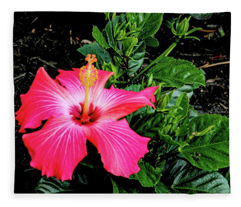 Flower Fleece Blanket featuring the digital art La cayena by Daniel Cornell