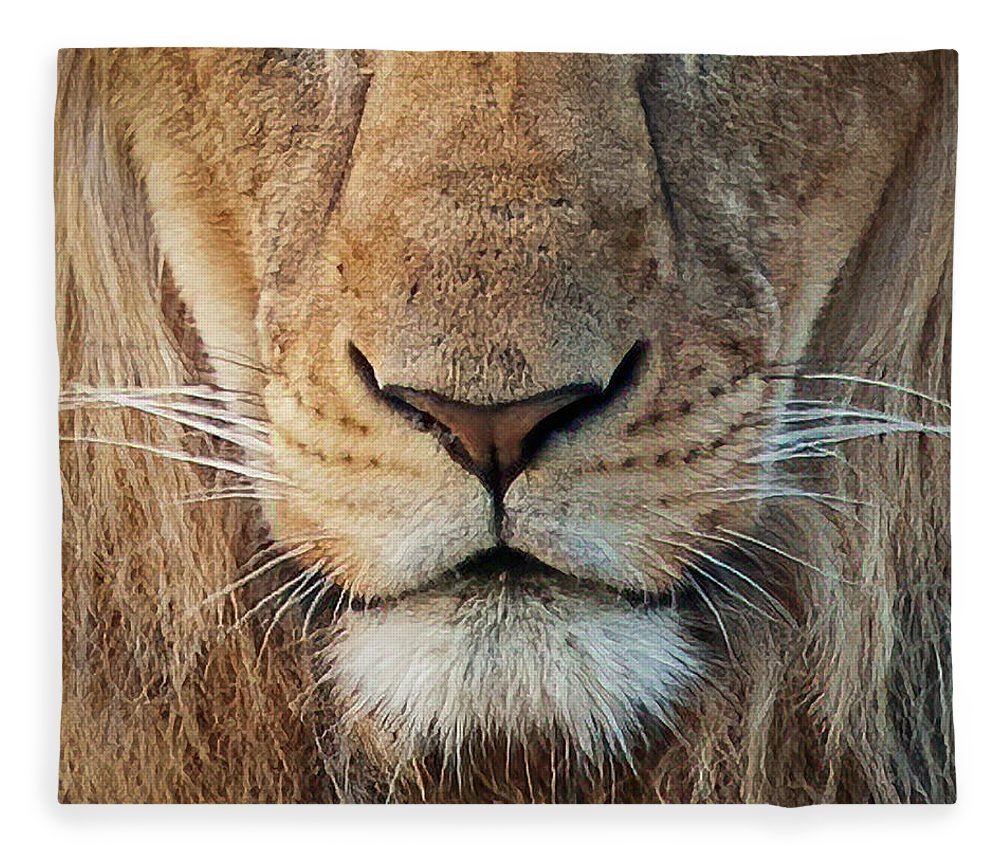 Lion Fleece Blanket featuring the photograph Lion by Steven Sparks