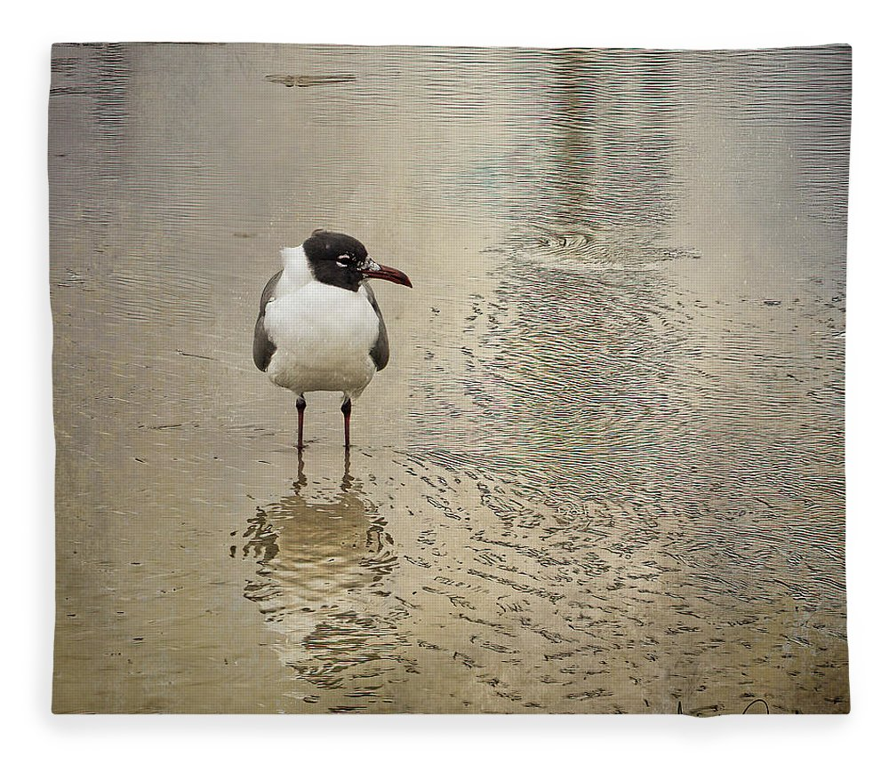 Seagull Fleece Blanket featuring the photograph Lone Laughing Gull by Linda Lee Hall
