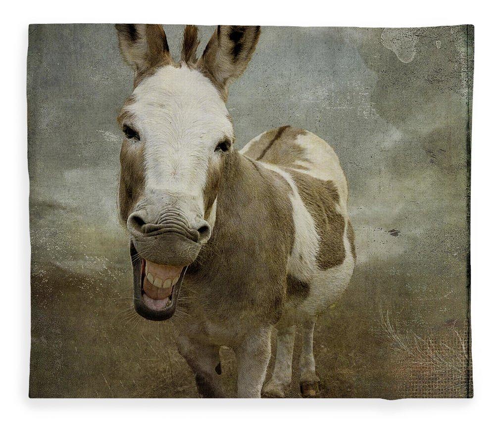 Donkey Fleece Blanket featuring the digital art Pablo at the Seashore by Linda Lee Hall