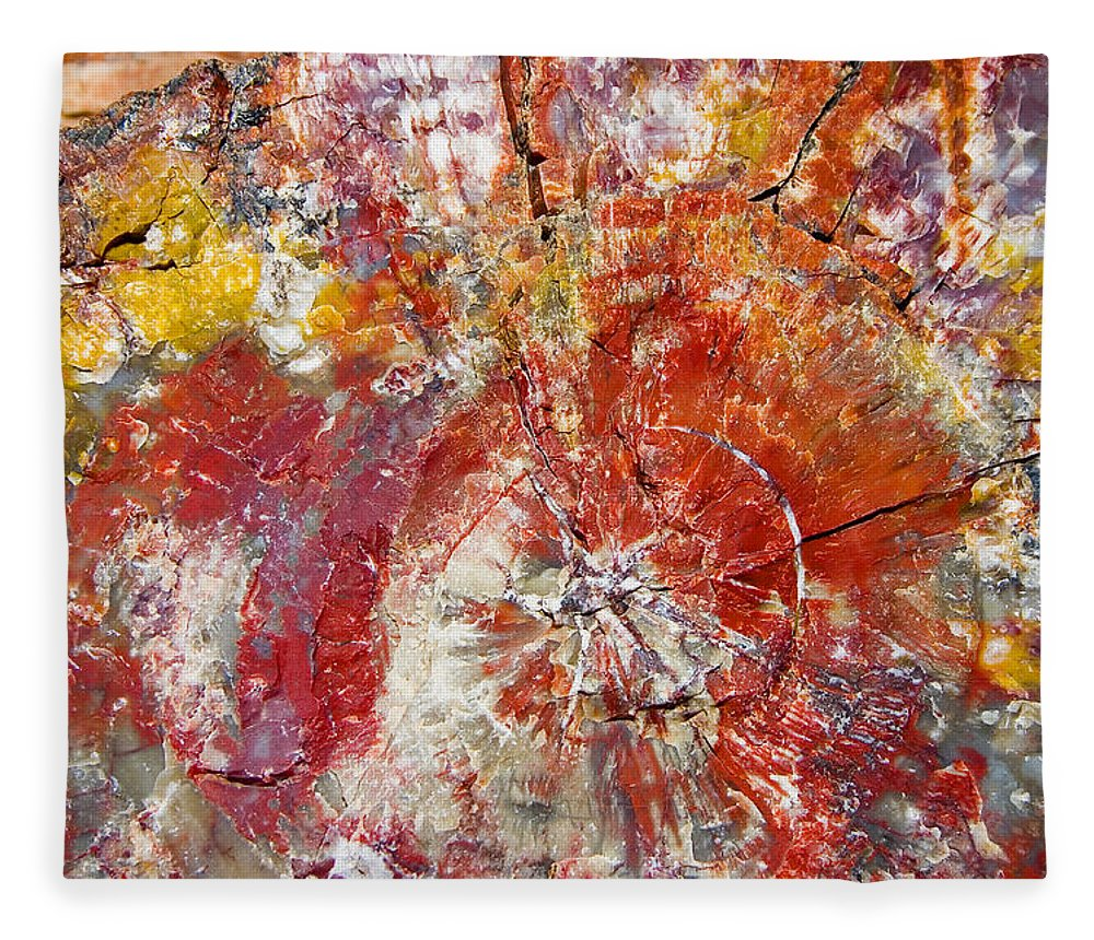Petrified Wood Stone Texture Abstract Color Skip Hunt Fleece Blanket featuring the photograph Painted Desert Wood 1 by Skip Hunt