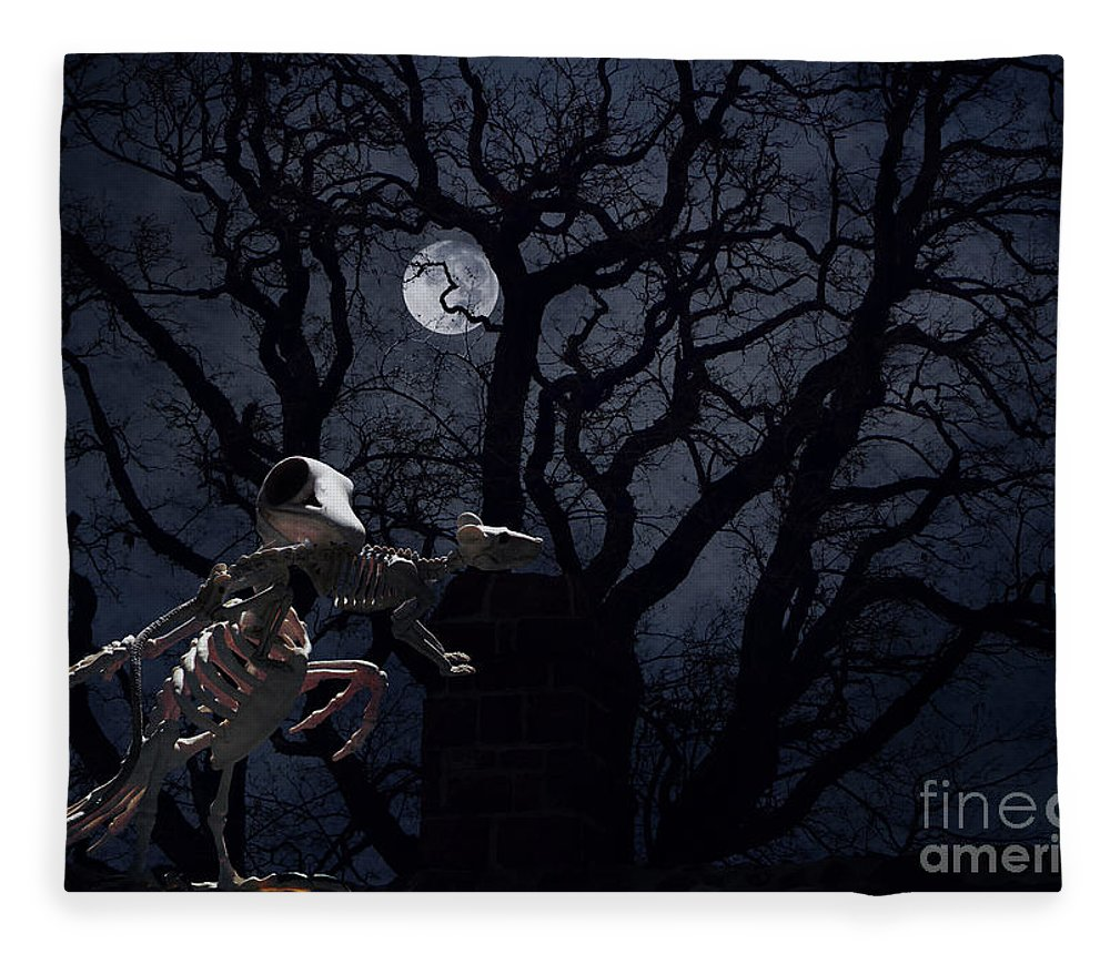 Raven Fleece Blanket featuring the photograph Raven and Rat Skeleton in Moonlight - Halloween by Colleen Cornelius