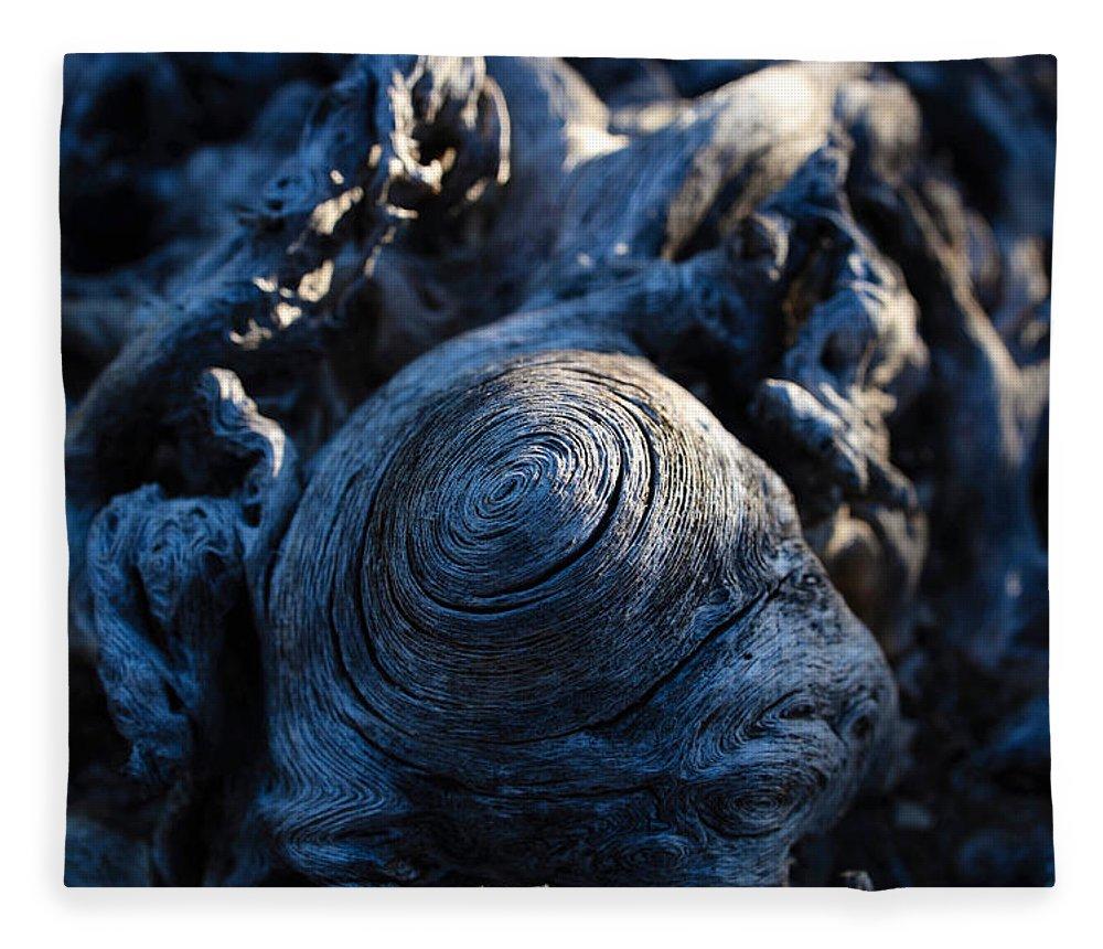 Saguaro Fleece Blanket featuring the photograph Saguaro Vortex by Kati Astraeir