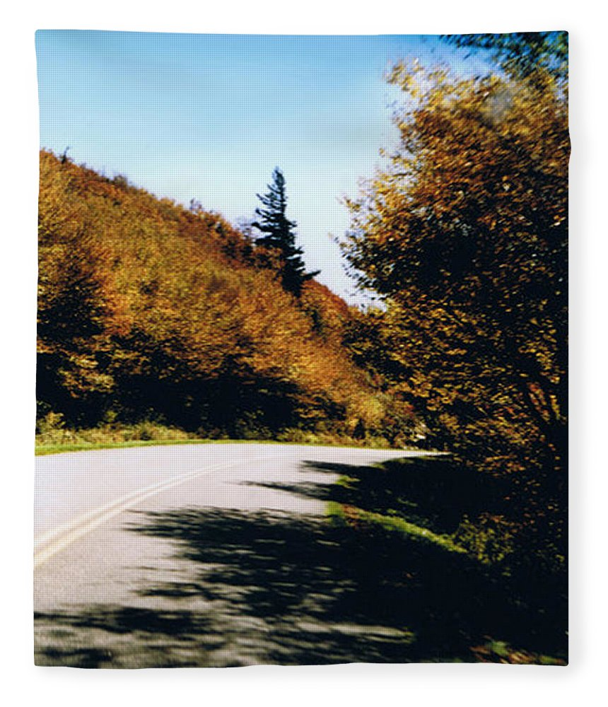 High In The Great Smoky Mtn. As You Round A Curve Stands This Noble Spruce. Fleece Blanket featuring the photograph Single Spruce by Seth Weaver