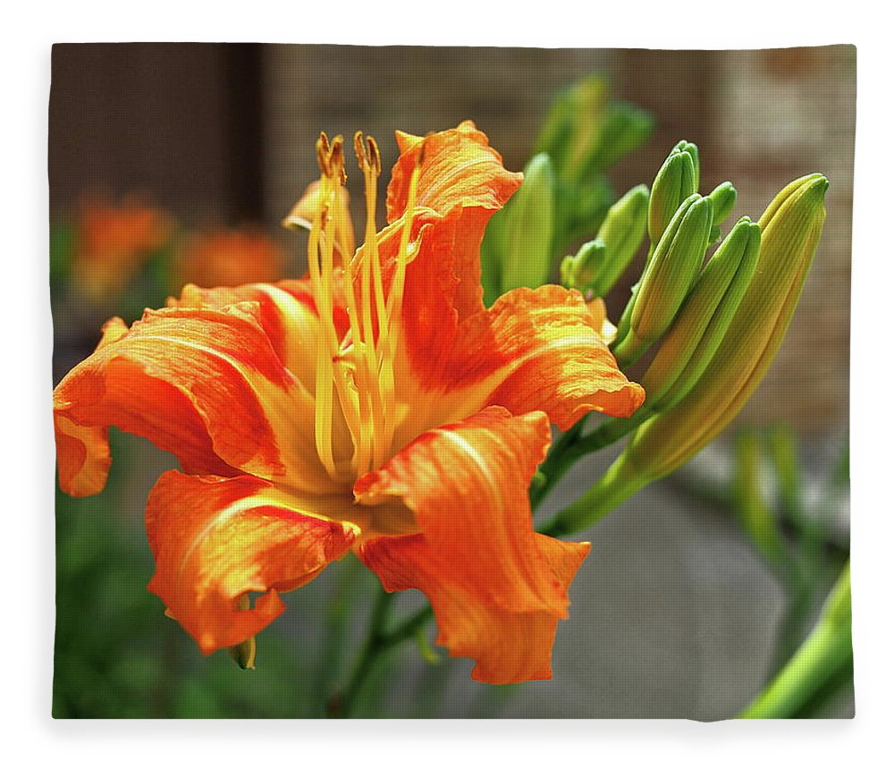 Orange Fleece Blanket featuring the photograph Spring Flower 14 by C Winslow Shafer